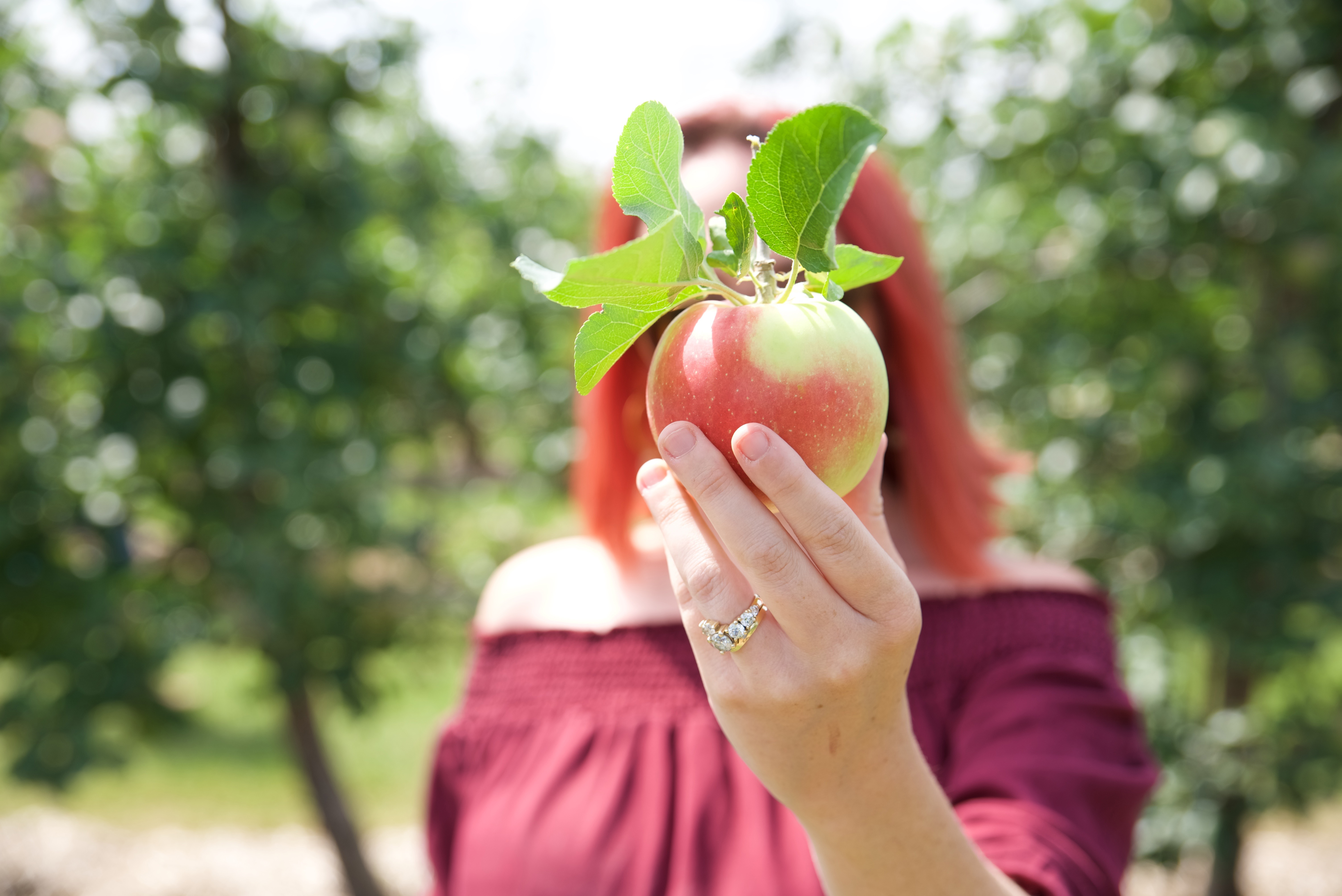 apple-perfection
