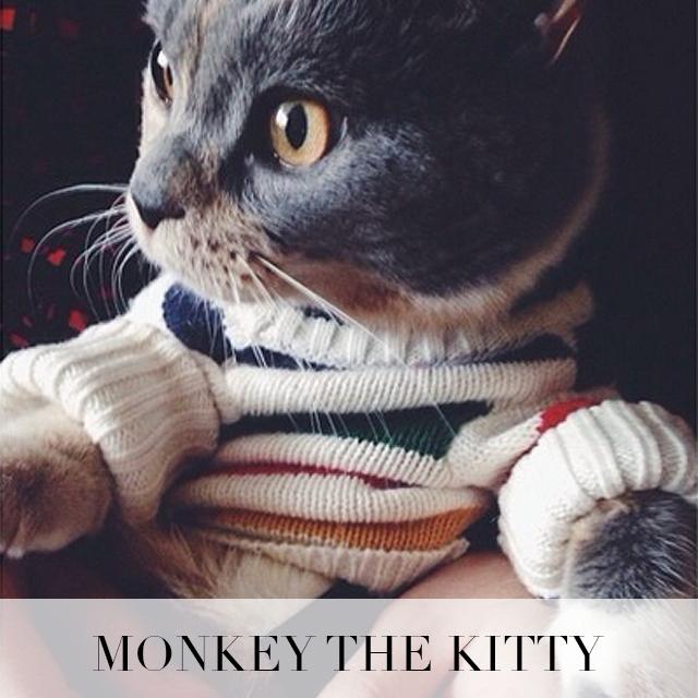 monkey_button